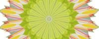 FloweringOpen1
